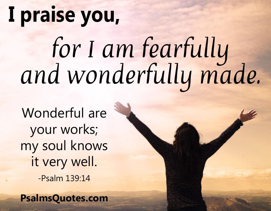 psalm 13914 popular psalm bible verse