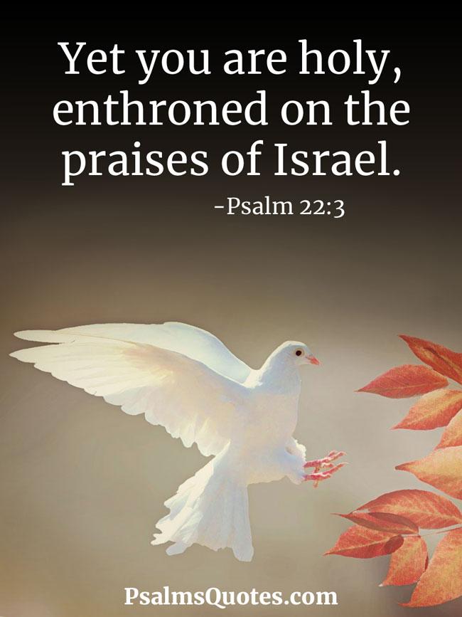 Psalm 22 - Popular Verses in Favorite Translations - Complete Psalm in KJV