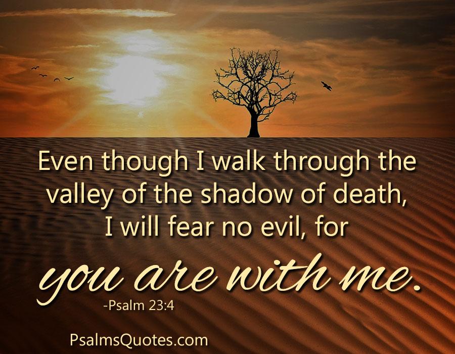 Psalm 23 4 Faith Bible Verse