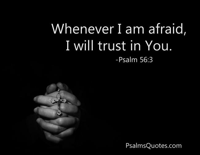 Psalm 56 3 Psalm Of Comfort