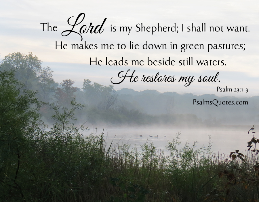 the lord is my shepherd bible verse